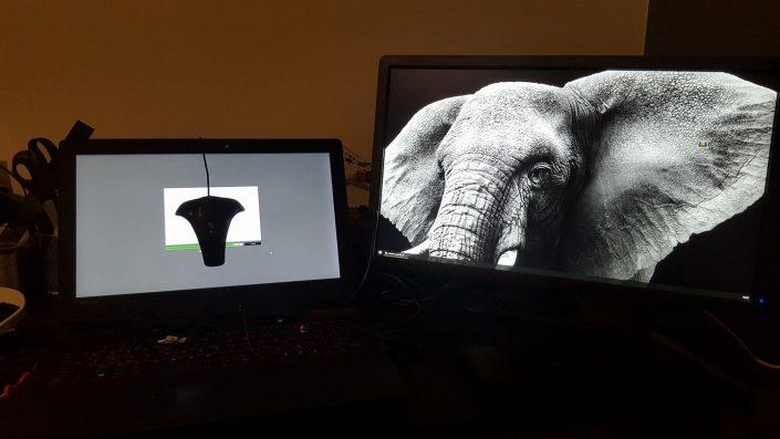 Dvejų monitorių kalibravimas